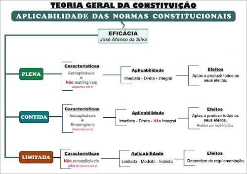 Mapas-Mentais-Carreiras-Policiais-Constitucional.jpg